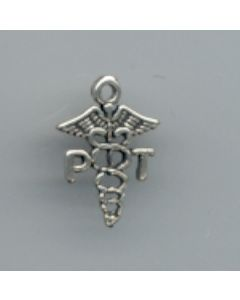 Sterling Silver PT Charm