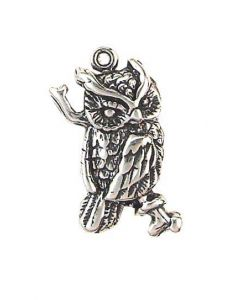 Sterling Silver Bird Charm: Owl, One Sided